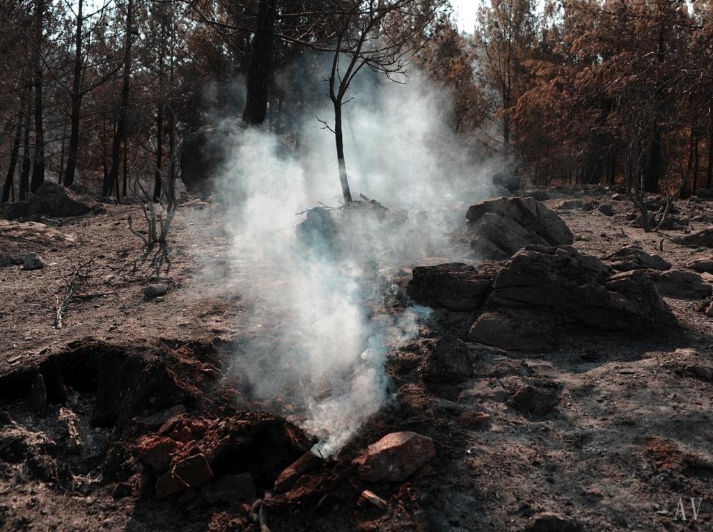 thassos-fire-11