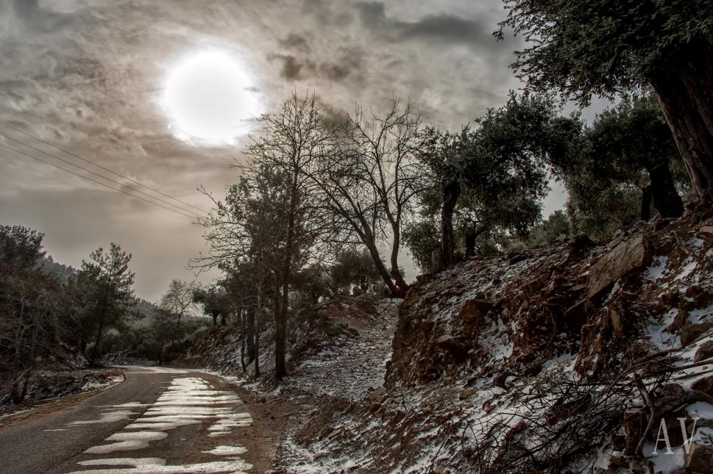 thassos-winter-mariesx